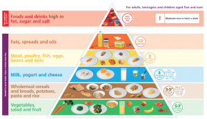 nutrition knowledge